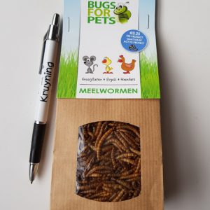 Bugs for pets, meelwormen