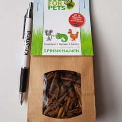 Bugs for pets, sprinkhanen